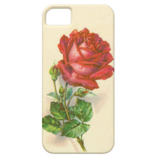 Red Rose iPhone case Barely There iPhone 5 Case
