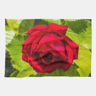 Red rose kitchen towel