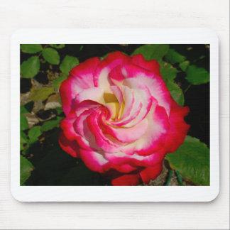 RED ROSE LOVE FLOWER MOUSEPADS