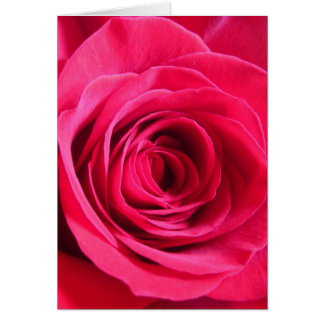 Red Rose * Love Greeting Card
