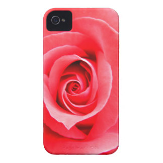 Red rose macro photo Case-Mate iPhone 4 case