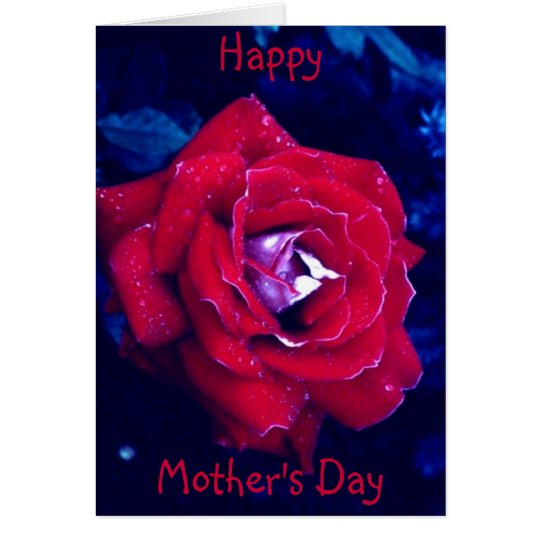 Red Rose - Mother's Day Card