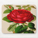 Red Rose Mouse Pads