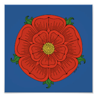 Red Rose of Lancaster Print Photo