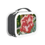 Red rose painting lunchbox