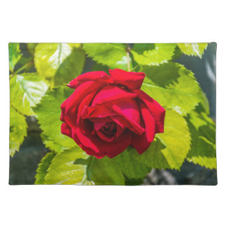 Red rose placemat