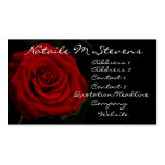 Red Rose Profile Card