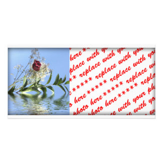 Red Rose & Reflection Picture Card
