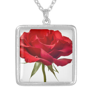 Red Rose - Roses Customized Template Silver Plated Necklace