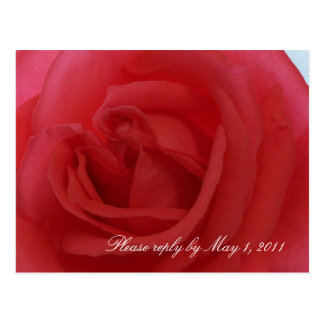 Red Rose RSVP Postcard