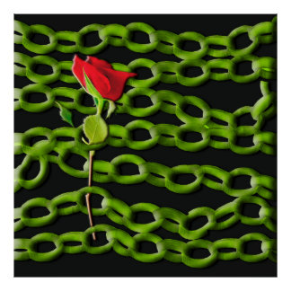Red rose saved with green chains poster