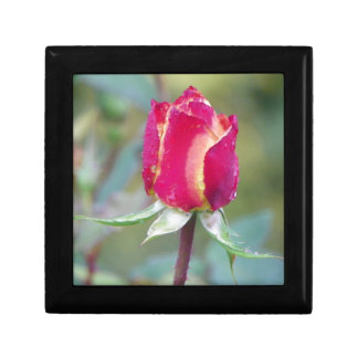 Red rose small square gift box