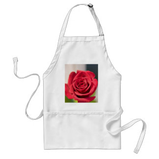 Red Rose Standard Apron