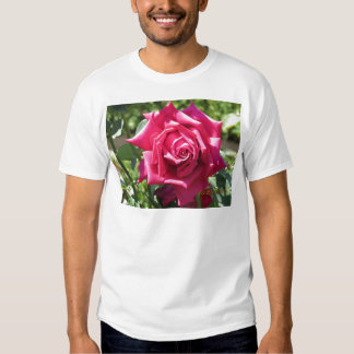 Red rose t shirts
