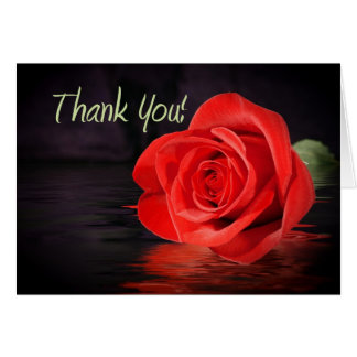 Red Rose Thank You Greeting Card