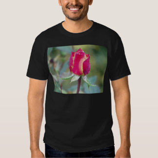 Red rose tshirts