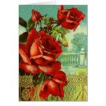 Red Rose Vintage Valentine Greeting Card