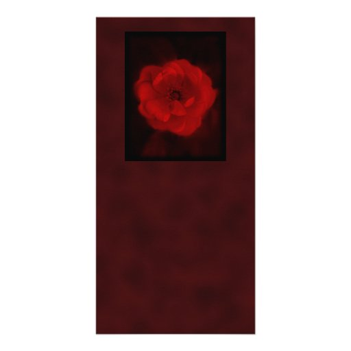 Red Rose. With Black and Deep Red. Custom Photo Card