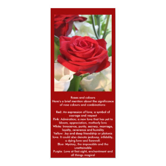 Red Rose with Garden Background Card