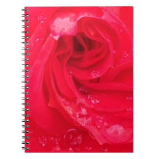 Red Rose with Raindrops Postage Stamp Notebooks