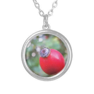 Red rosehips with white Bokeh Necklaces