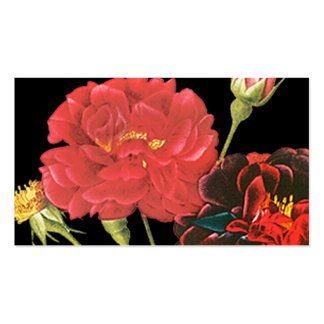Red Roses and Bud Pack Of Standard Business Cards
