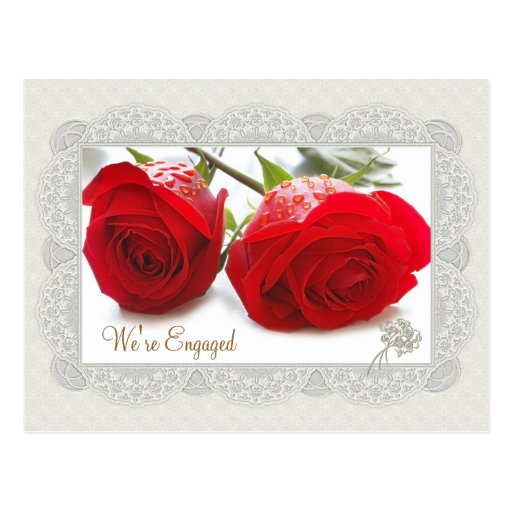 Red roses Engagement announcement Postcards