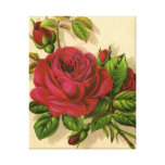 red roses,flowers canvas print
