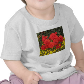 Red Roses Garden Tees