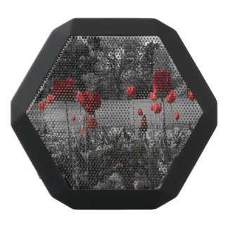 red roses in black and white garden photography black bluetooth speaker