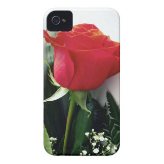 Red roses iPhone 4 cover