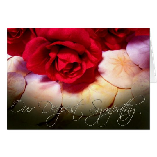 Red Roses Sand Dollars Deepest Sympathy Card