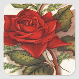 Red Roses Square Sticker