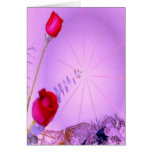 Red Roses - Thinking of You Card
