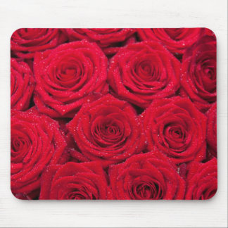 Red roses with water drops mouse pad