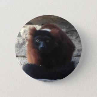 Red Ruffed Lemur 6 Cm Round Badge