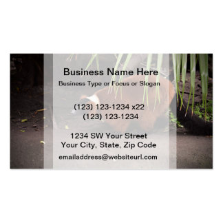 red ruffed lemur walking left w frond  animal business card templates