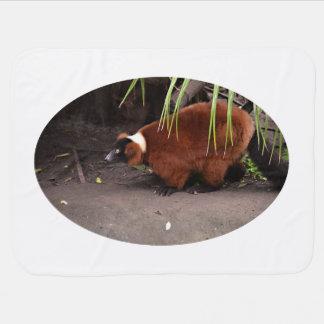 red ruffed lemur walking left w frond  animal receiving blankets
