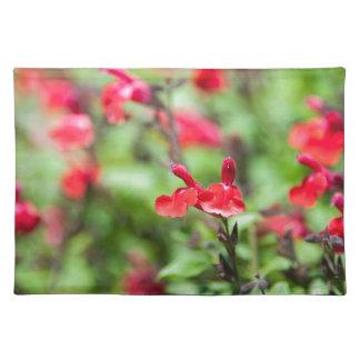Red Salvia Place Mats