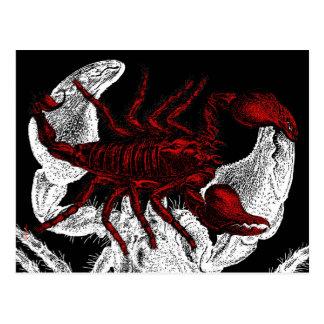 Red Scorpion - Postcard