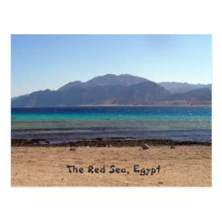 Red Sea Laguna Postcard