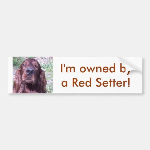 Red Setter Bumper Stickers
