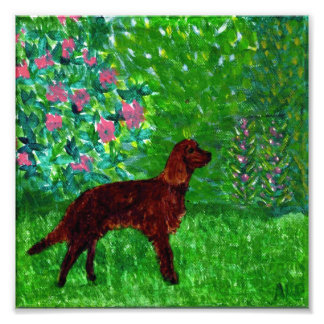 Red Setter in the Garden Dog Art Photo Print