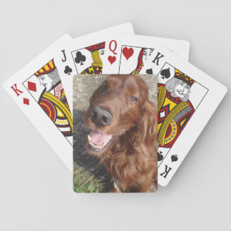 Red Setter playing cards
