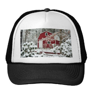 Red Shed During Winter Cap