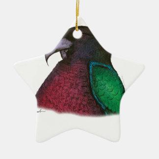 red shining parrot, tony fernandes ceramic star decoration