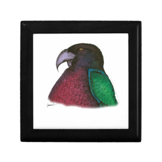 red shining parrot, tony fernandes gift box