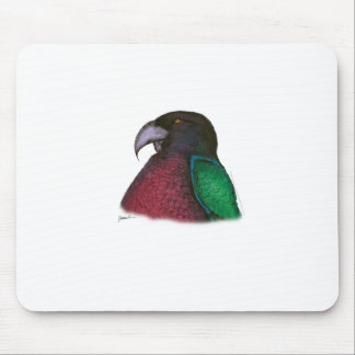 red shining parrot, tony fernandes mouse mat