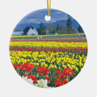 Red Skagit Valley, Mount Rainier, Washington, USA Christmas Ornament