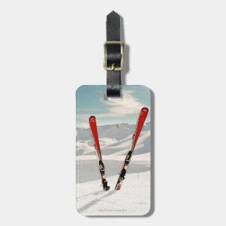 Red Skis Bag Tag